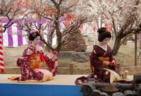 Letni Powiew Japonii - XVI Festiwal Kultury Japońskiej z elementami kultury Indii i Chin