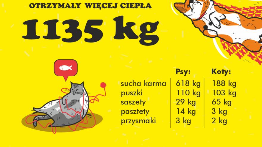 projekt Agnieszka Kaszczyszyn